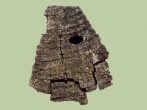 Brun barkbock